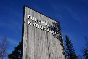 Fulufjällets Nationalpark i Älvdalens kommun bildades för 12 år sedan och har många besökare från när och fjärran , året runt.