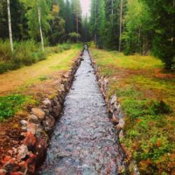 Porfyrgården-5-300x300.jpg