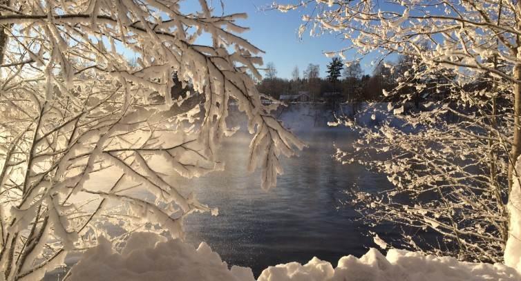 vinterbild-alven